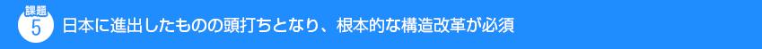 課題5 日本に進出したものの頭打ちとなり、根本的な構造改革が必須